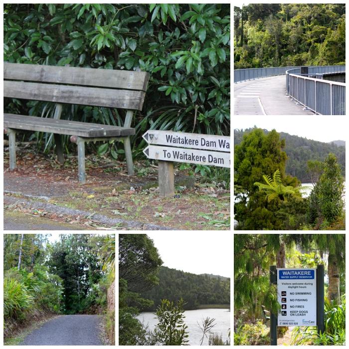 Waitakere Dam Walk